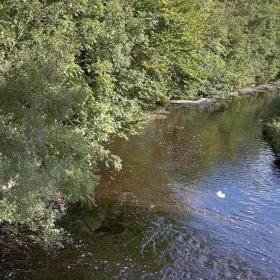 below-the-green-bridge