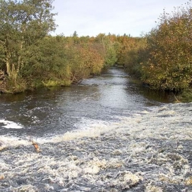 down-stream-from-the-green-weir