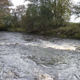 downstream-from-barclays-weir