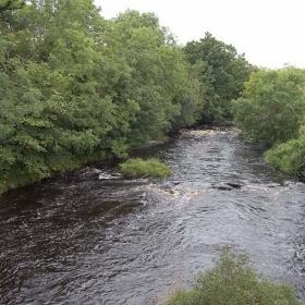 upstream-from-bovaghhunters-bridge